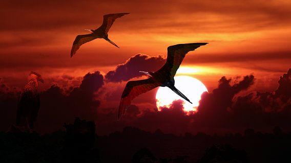 Fregat vogels tegen ondergaande zon van Loraine van der Sande