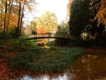 spiegeling in het water met herfstkleuren van Joke te Grotenhuis