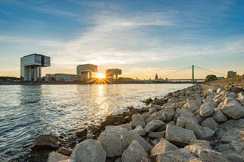 Summer in Cologne van Michael Valjak