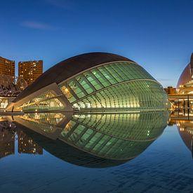 City of Arts and Sciences, Valencia - 3 van Tux Photography