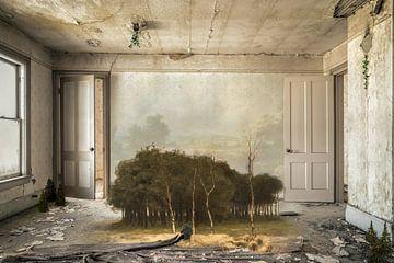 Ein eigener Lebensraum von Hannie Kassenaar