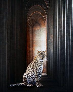 Panther von Jacky Gerritsen