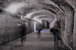 Schimmen met een tunnelvisie van Elles van den Broek