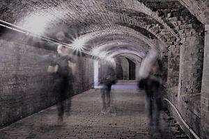 Schimmen met een tunnelvisie van