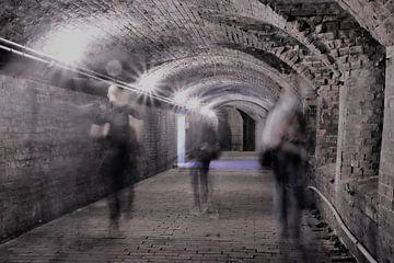 Schimmen met een tunnelvisie sur Elles van den Broek