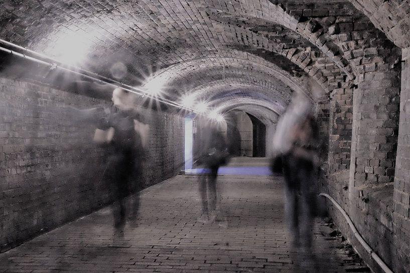 Schimmen met een tunnelvisie von Elles van den Broek