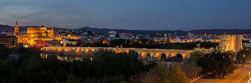 Panorama van Cordoba van René Weijers