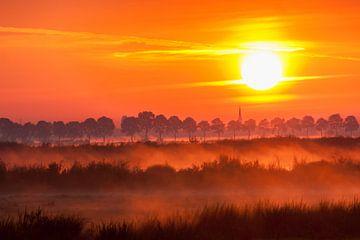 Mist over de velden bij zonsopkomst van Stephan Neven