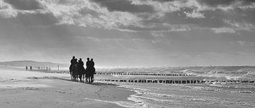 Paarden aan het strand van Domburg van Zeeland op Foto