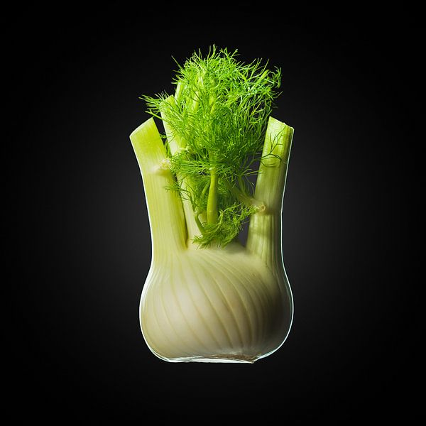 Food-Venkel op zwarte achtergrond van Everards Photography