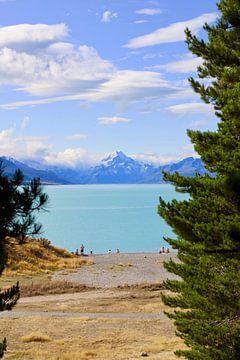 Der Riese von Neuseeland von Maurits Simons