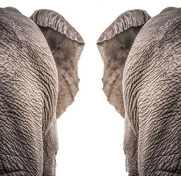 Olifanten van Hennie Zeij