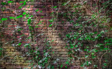 Baksteen muur behangpapier 9 Hoge resolutie van Olivier Photography