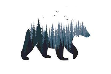 Bär - Wald von Felix Brönnimann