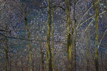 Wald aus orientalischen Märchen von Hanneke Luit