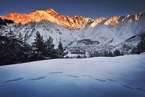 Kazbek berg in Georgië bij zonsondergang van Olga Ilina