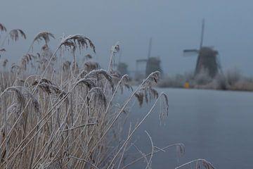 Doorkijkje molens Kinderdijk van Bert van Wijk