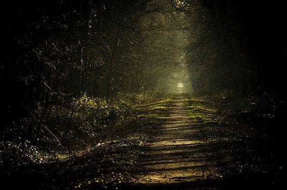 No other path... van Dick Nieswaag