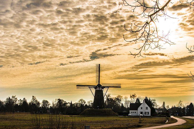 A Dutch windmill in evening light van Brian Morgan