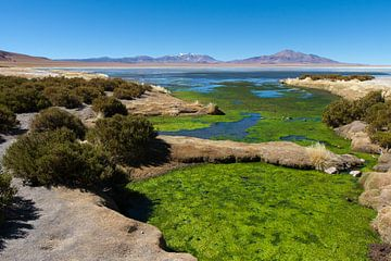 Woestijn in Chili van Robbie Veldwijk