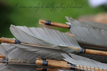 A arrow can only be shot by pulling it backward - Teksten  Pijlen van Wilma Meurs