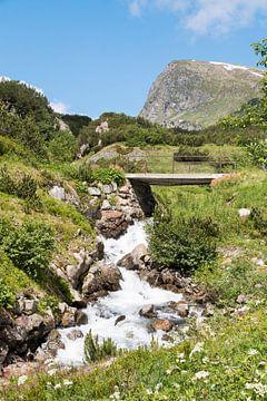 Waterval door Tirols landschap van Aukelien Minnema