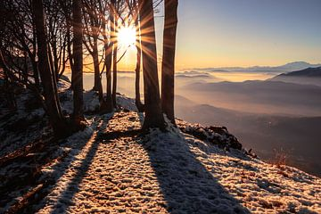 Vista Luganese - Tessin - Schweiz