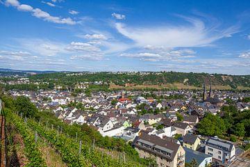 Güls district aan de Moezel, Koblenz, Rijnland-Palts, Duitsland, Europa van Torsten Krüger