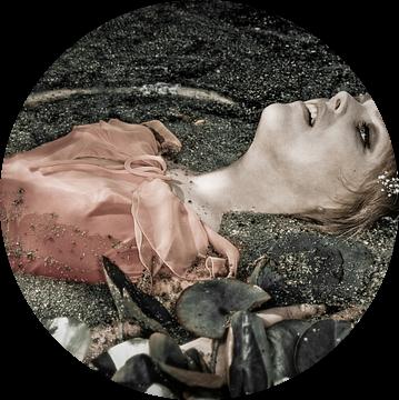 Ophelia 6 van Stefan Witte