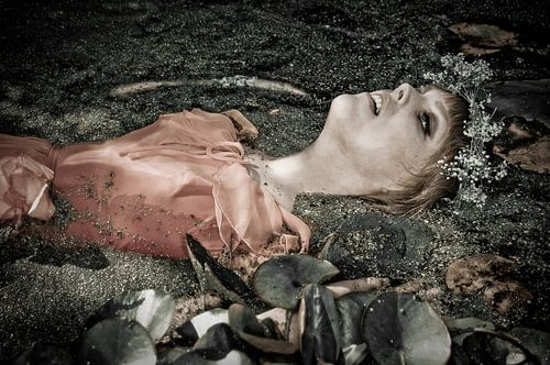 Ophelia 6 von Stefan Witte