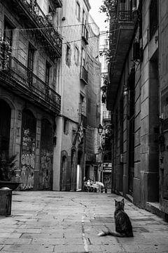 Romantische stadsgezicht in historische straat in Barcelona van Francisca Snel