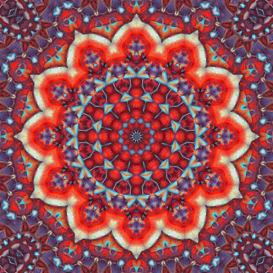 Mandala Abendsonne von Marion Tenbergen