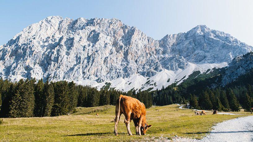 Zugspitze Arena Tirol van Rob van Dongen
