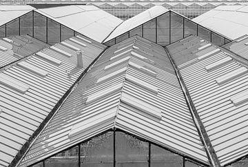Gerade und gewinkelte Linien von Paul Veen