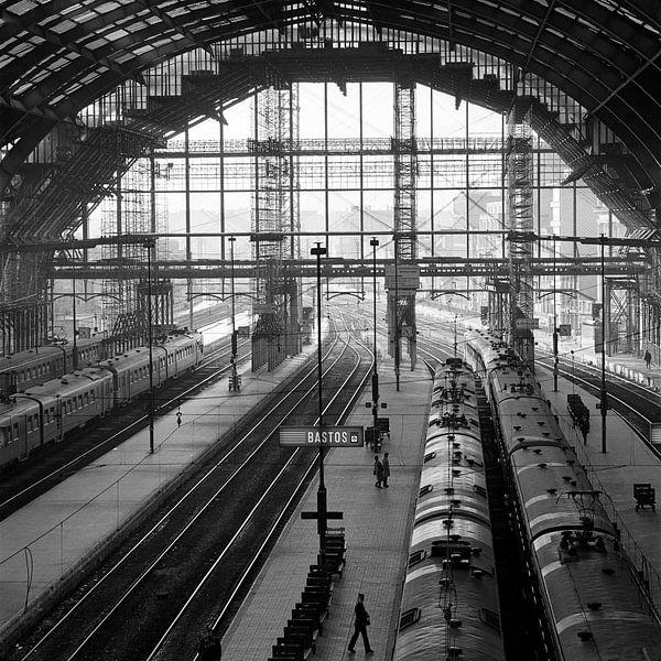 Centraal Station Antwerpen van Raoul Suermondt