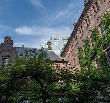 Tuin van het stadhuis Rotterdam. van Danny Koring