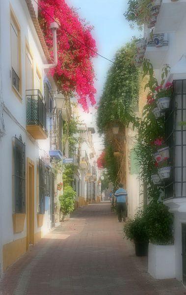 Marbella Andalusien van hako photo