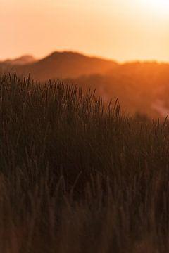 Zonsondergang duinen Terschelling