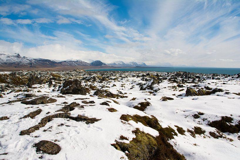 Sneeuwlandschap in IJsland van Lifelicious