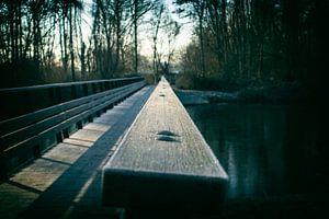 De brug naar de toekomst van