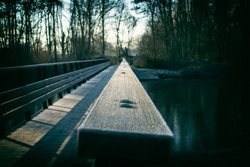 De brug naar de toekomst
