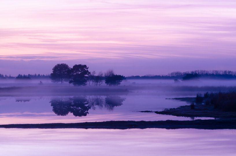 Strabrechtse Heide 158 van Deshamer