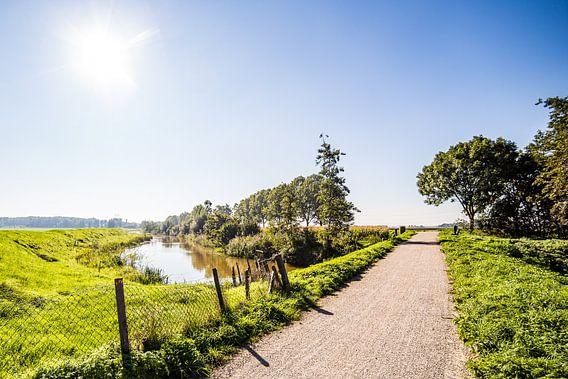 Dongeroute van Thomas van der Willik
