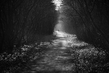 Gemeinsam (schwarz-weiß) von Joran Quinten