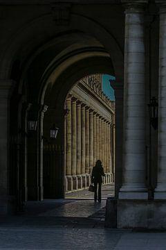 galerie et colonnes à paris sur Eric van Nieuwland