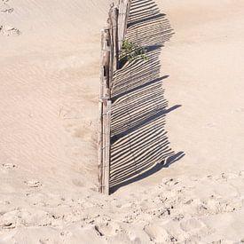 Clôture sur la plage sur Shirley Hill