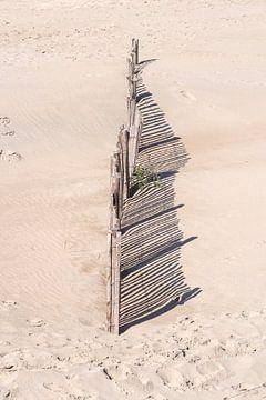 Hekje op het strand van Allerlei foto's