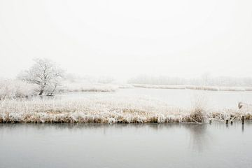 Winter in Nederland von