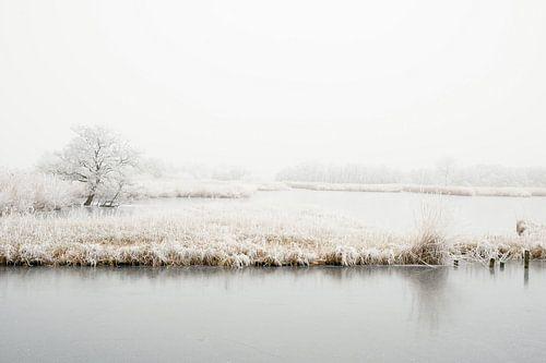 Winter in Nederland von Nicolette Schuur
