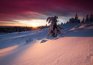 Zonsondergang in Noorwegen van
